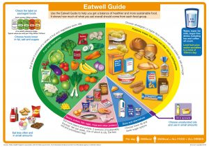 Eatwell Guide from the NHS Website